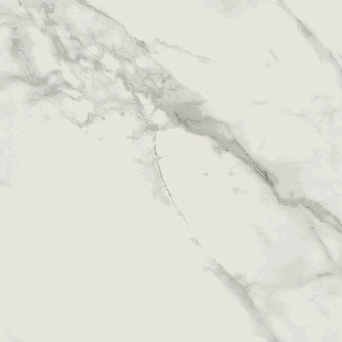 CALACATTA MARBLE WHITE POLISHED MAT 59,8x59,8