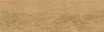 RAW WOOD BEIGE 18,5x59,8